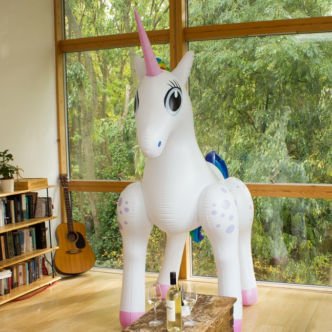 giant-inflatable-unicorn_31538