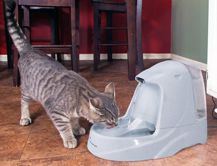 PetSafe Drinking Pet Fountain
